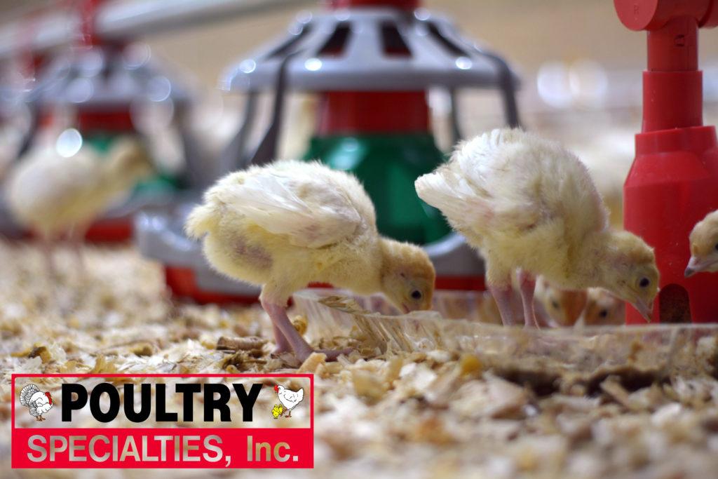 Liberty Turkey Feeder 3 - Copy